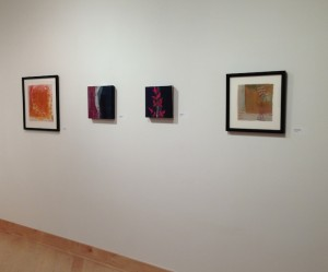 High Fiber- Arkansas Women to Watch, Walton Arts Center